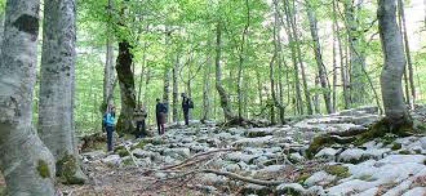 Tutti salvi gli 11 scout persi sul sentiero di Pescasseroli
