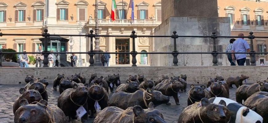 FLASH MOB CON ORSI DI CARTAPESTA DAVANTI A MONTECITORIO