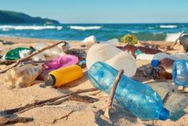 INQUINAMENTO-WWF SU EFFETTO PLASTICA.