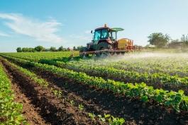 AGRICOLTURA: NECESSARIA LIQUIDITÀ PER SOSTENERE IL RILANCIO