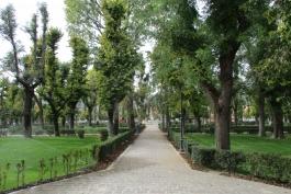 Pulizia aree verdi, il Comune le affida a una coop sociale.