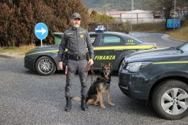 Guardia di Finanza, sequestra hashish e marijuana.