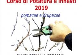 CORSO DI POTATURA ALL'ISTITUTO AGRARIO