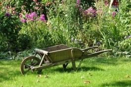 Al via il corso di giardinaggio: imparare a prendersi cura delle aree verdi marsicane