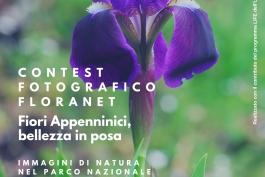I FIORI PROTAGONISTI DEL CONTEST FOTOGRAFICO