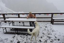 La neve a giugno, sui social diventano virali le foto dei turisti sul Gran Sasso